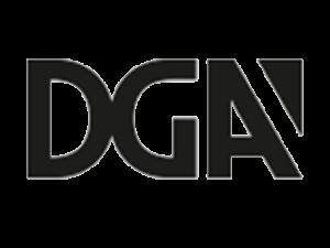 unnamed 300x225 - Запись онлайн-семинара по DGA на youtube канале Lighting Icons!